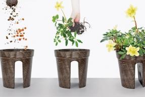 Květináče pro lepší design (ilustrační fotografie)