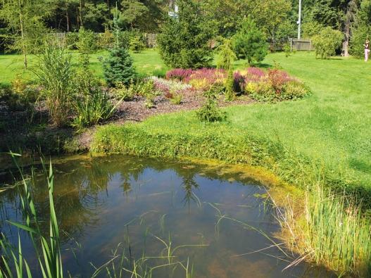 Vodní plocha vblízkosti vřesoviště zvlhčuje vzduch, partie nenásilně navazuje na pás vodních rostlin aokrasných trav.