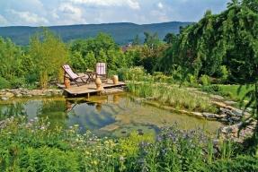 Když se mění zahrada od základu