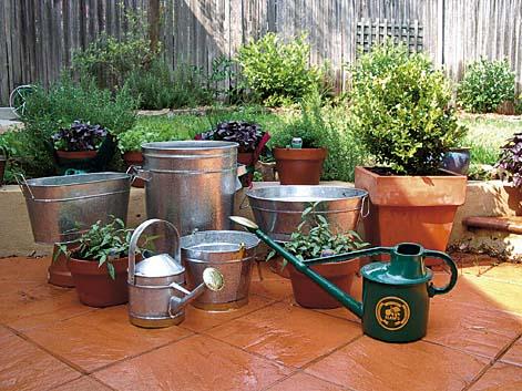Rostlinám pomáhá také dostatečná zálivka.