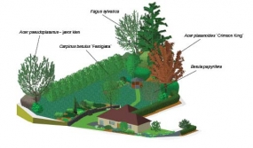 Rozložení zahrady