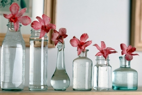 Krásné vázy plné květin