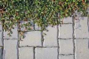 Sólo pro betonové dlažby