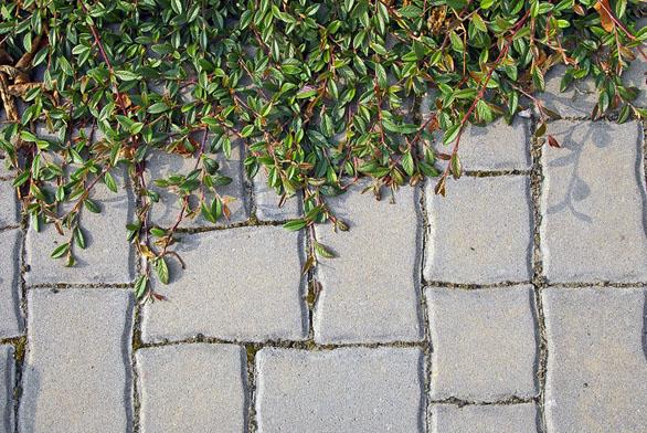 Střídání různých formátů dlažby působí zajímavě aneotřele (PRESBETON).