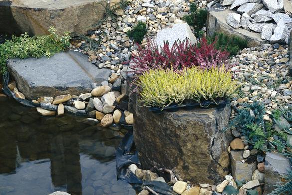 Zahrada u řadového domku (ilustrační fotografie)