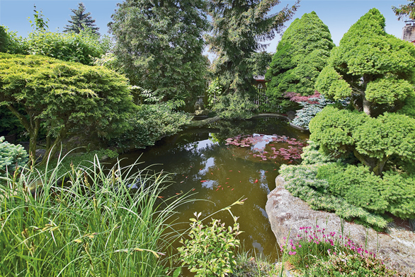 Zahrada plná snů a fantazie