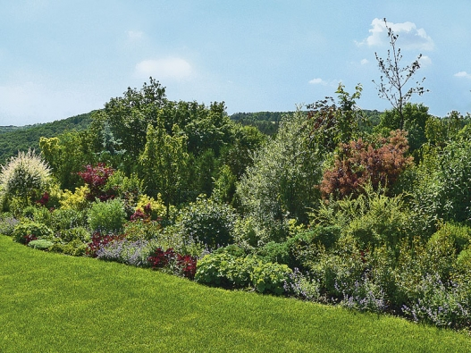 Zahrada je odcloněna přirozenou partií zeleně, ve které se uplatní jak vyšší stromy, tak keře atrvalky vpopředí.