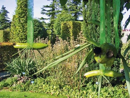 Vkorunách opadaných listnáčů se až do mrazů budou prohánět ptáci zokurky.