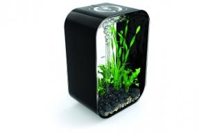 Tip na dárek: designové akvárium
