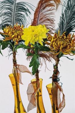 Živý obraz zMoulin Rouge se slavnostními pery aodvážnými kráskami je velmi snadný na přípravu. Jednotlivé velkokvěté chryzantémy připevněte dekorativní stuhou kozdobným perům. Postavte je do řady vysokých, úzkých váz, aby připomínaly tanečnice při kankánu.