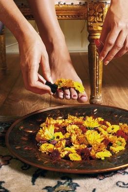Chryzantémy jsou tu pro vás, ikdyž chcete hýčkat svá chodidla blahodárnou květinovou lázní.