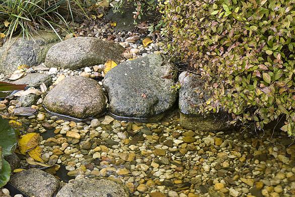 Romantický potůček provzdušňuje jezírko aještě potěší příjemným zvukem tekoucí vody.