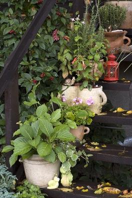 Ozdobou jsou nejen rostliny, ale ibuclaté ušaté hrnce na schodech na terasu.