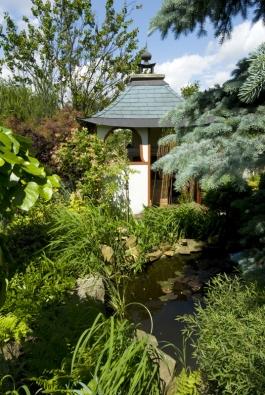 Jezírko slekníny patří kčínským zahradám odnepaměti. Vtomto případě ise zakrslou vrbičkou  (Salix) asokrasnými trávami typu Miscanthus, vpozadí ruj vlasatá (Cotinus coggygria Scop., syn. Rhus cotinus L.).
