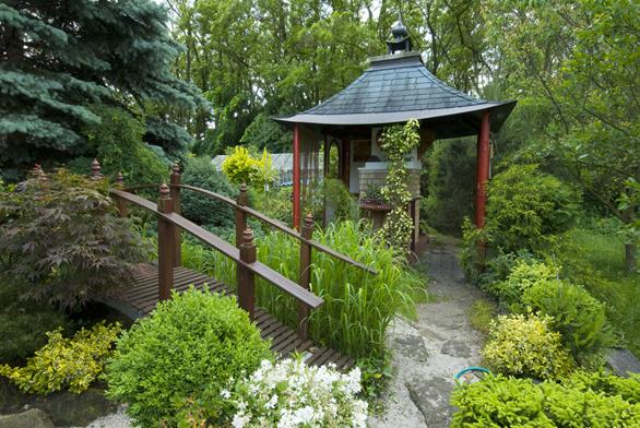 Centrum zahrady tvoří zahradní altán sněkterými rušivými prvky uvnitř adále dřevěný mostek sbíle kvetoucí japonskou azalkou. Obě zahradní dominanty jsou obklopeny vzrostlou zelení. Uprostřed se tyčí stříbrný smrk (Picea pungens) ačervený javor (Acer rubrum), vše je doplněno zimostrázem zeleným (Buxus sempervirens) ažlutozeleným brslenem (zvláště brslen Fortuneův Euonymus fortunei). Ualtánu je vysazen panašovaný břečťan (Marginata Elegantissima).