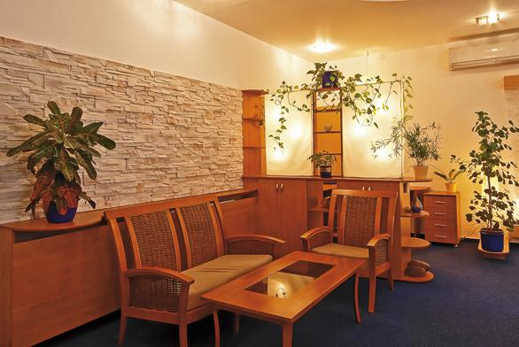 Vyváženost pěti elementů: voda je symbolizována modrým kobercem askleněnou deskou stolu, nábytek arostliny zastupují dřevo, oheň je představován rozmanitým osvětlením, země kamenným obkladem akov zaoblenými tvary.