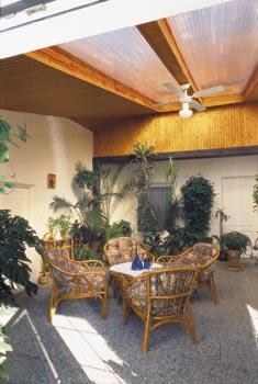 Dračince, palmy kencie a fénix, šeflera a další rostliny dobře rostou v rozptýleném stropním světle.