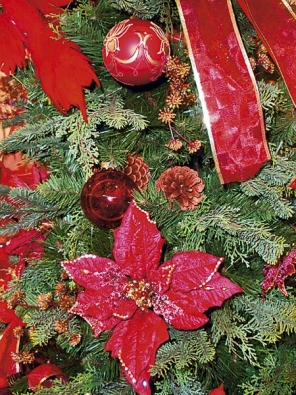 Tradiční Vánoce symbolizují zejména červená, zelená a zlatá (IDEAL FLOR).
