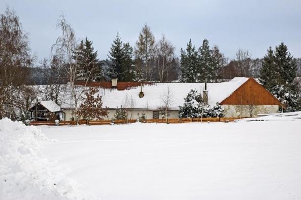 Z obrovského pozemku vydělili 2 000 m² a jejich oplocením, hlavně kvůli dvěma jezevčíkům, vznikla zahrada.