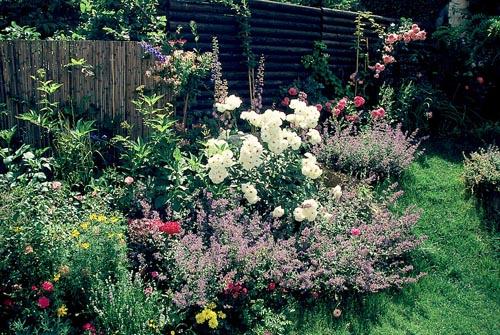 Pod pojmem smíšený trvalkový záhon se rozumí hustě osázená plocha nejen trvalkami, ale i růžemi a okrasnými dřevinami.