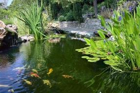 Zahrada z říše vodních zrcadel