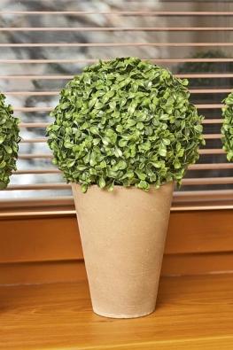 Umělé květiny, které zdobí okenní parapet, jsou k nerozeznání od živých.