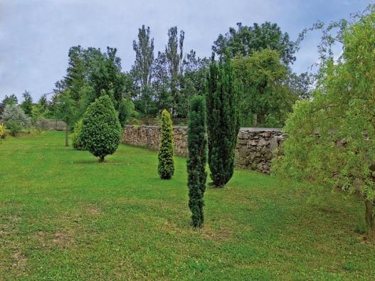 Výběr zajímavých dřevin svědčí o botanických znalostech majitelů zahrady.