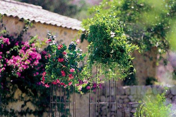 Kovové stojany na popínavé rostliny