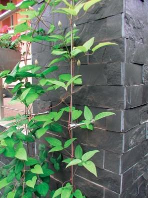 Lankovými systémy lze doplnit sloupy pergol a zahradních přístřešků (PAVLÍNEK).