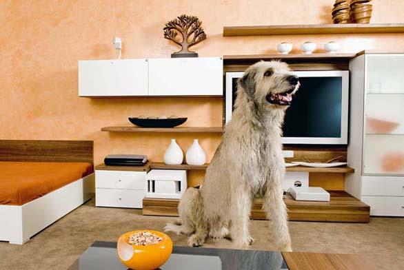 V interiéru jsou použity velmi kvalitní koberce, které se běžně používají v kasinech.