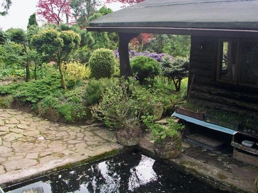 Zahradě sluší odrazy ve vodní hladině