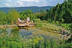 Zahrada s molem a výhledem na potok