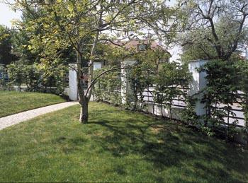 U vstupu na pozemek domu stojí ořešák, plot zarůstá mladé habroví.