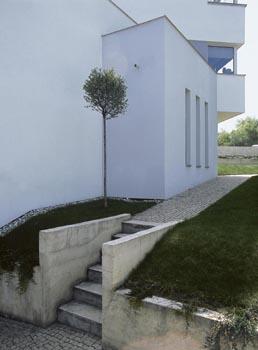 Nika s višní se nalézá u jediných zahradních schodů, které vedou ke garáži. Zídka porůstá skalníkem.