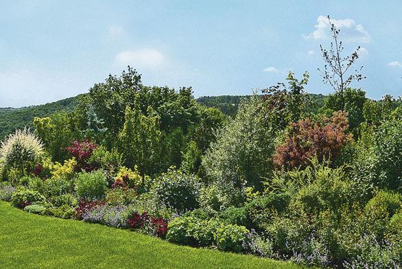 Zahrada vlastníma rukama (ilustrační fotografie)