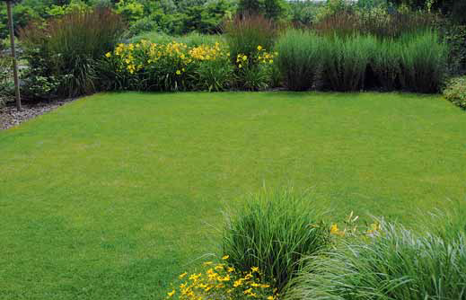 Hemerocallis 'Corky' najdeme na mnoha místech rozlehlé zahrady. Denivky jsou nenáročné trvalky okrasné nejen květem, ale i listy trávovitého vzhledu.