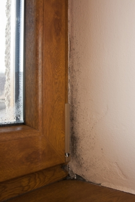 Vzdušná vlhkost, jež je produkována zejména dýcháním a vařením, se permanentně dostávala ven netěsnými okny.