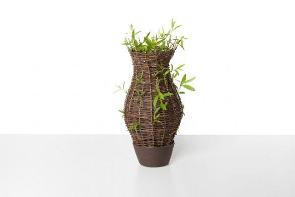 Vázy upletené z proutí vrb odkazují na počátky keramické tvorby, kdy proutí sloužilo jako podklad pro hliněnou vrstvu. Z hlíny zbyla ve váze miska, která umožňuje proutí žít dál, zelenat se. Zanikající umění košíkářského řemesla ožívá v Živé váze Michaely Tomiškové spolu s proutím.