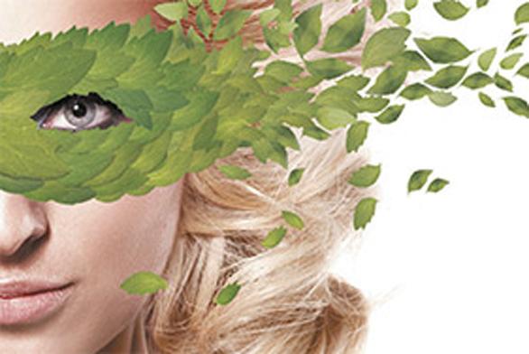 Baumit Klima