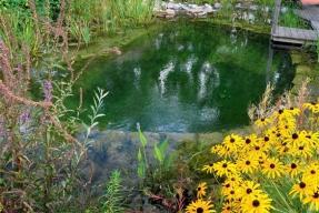 Voda v ekozahradě