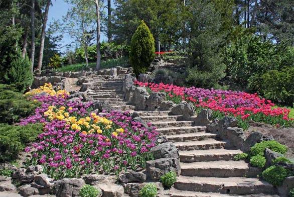Kamenné schody s přirozeným zakřivením jsou citlivě zakomponovány do svažité zahrady. Schodiště je ohraničeno lomovým kamenem, k němuž se mohou vysázet trvalky vhodné do skalek či suchých zídek.