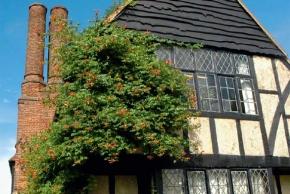 Zelené fasády na několik způsobů