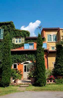 Popínavky mohou zakrýt nevzhlednou zeď a přívětivě působit nad vstupem do domu či do zahrady. Bez pravidelné péče se ovšem neobejdou.
