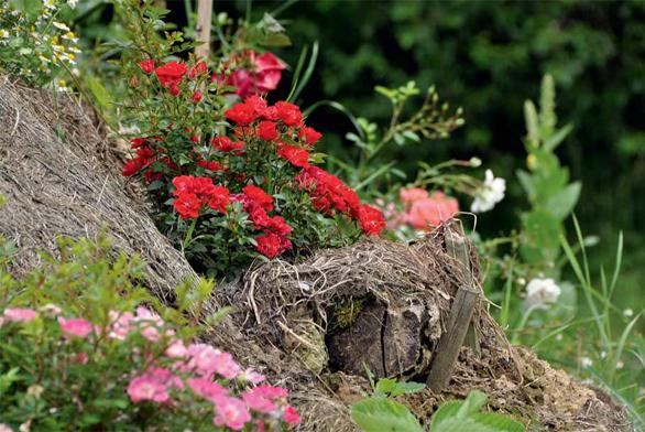 Vláhu drží mulč a tlející dřevo, tak jak to v přírodě bývá. V letních vedrech nemusíte zalévat ani na jižním svahu.