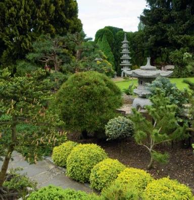 Nevšední kout zahrady s lampami.