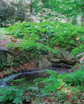 Členitý terén s prohlubněmi a vertikálně rozvrstvená vegetace, ideálně s listnatými stromy, keři i bylinami, srážkovou vodu dobře zachycují a následně zvolna uvolňují do prostředí.