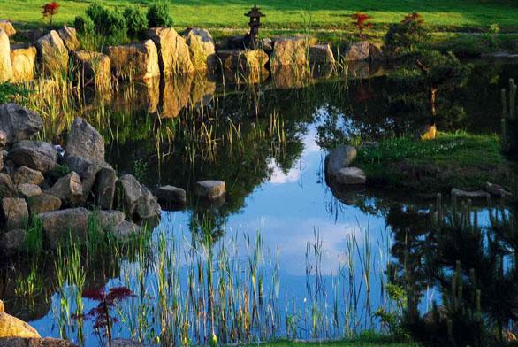 Probouzení zenové zahrady