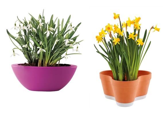 Zdobení květin jako součást umění