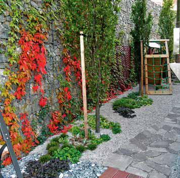 """""""Lesní"""" stinná část zahrady za domem s podsadbou trvalek, lezecím prvkem a dřevníkem."""