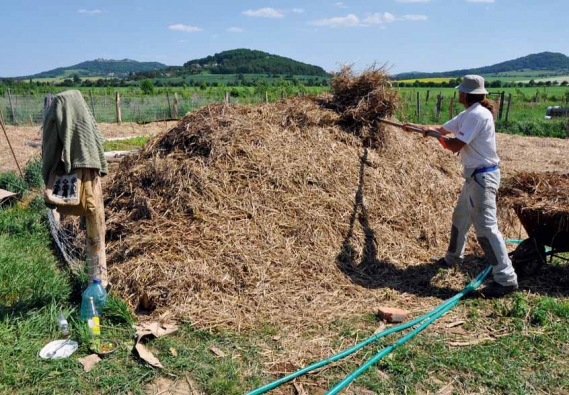 Brigádník právě zakrývá slámou záhon tvořený kládami, větvemi, kompostem a hnojem. Nejdříve vyrostou dýně milující hnůj, za rok se jahody těší na tlející dřevo.